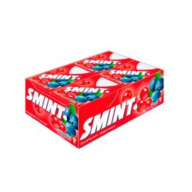 SMINT FRUTAS SILVESTRES 12X8GR.