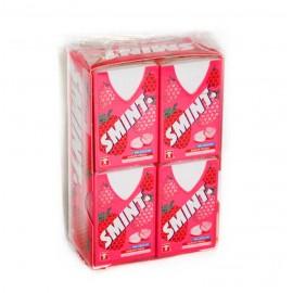 SMINT FLUOR FRESA 12X8GR.