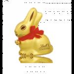 Conejo Oro