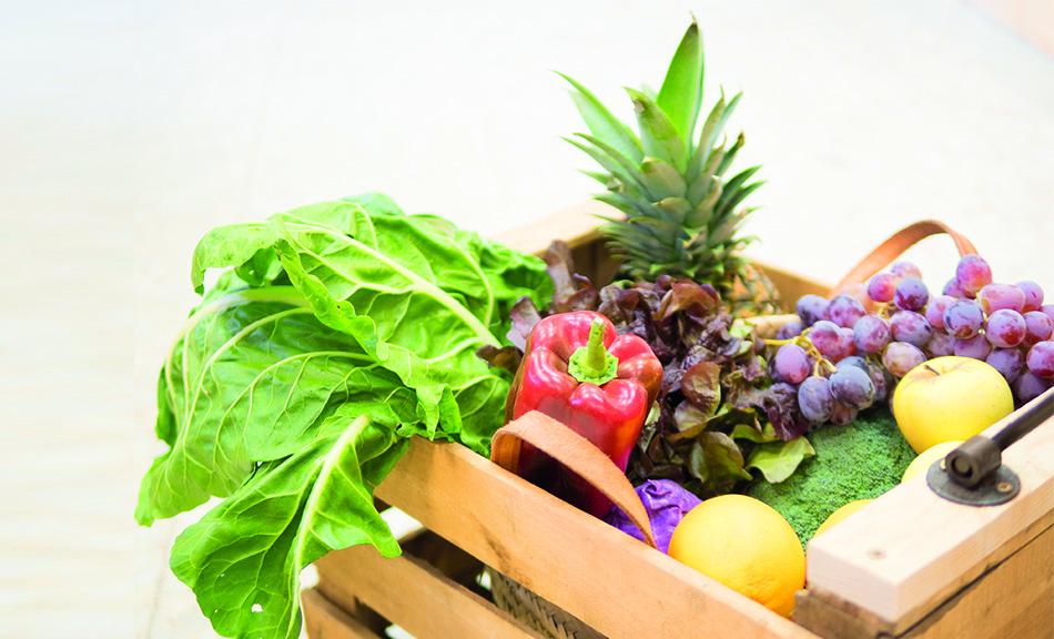 ¿Qué es la alimentación bio?